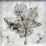 Dierker 19b,memento-mori-II,-Blattfrottage,-Schellack,-Tusche-auf-Glas,-20x20cm